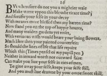 William Shakespeare, 16th Sonnet